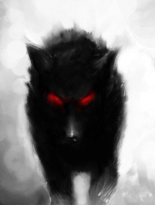 black dog 01
